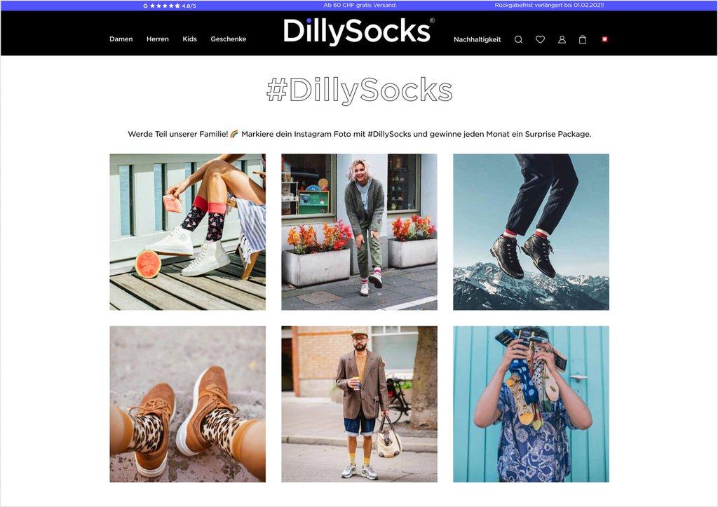 Dillysocks E-Commerce Fallstudie Bild 02